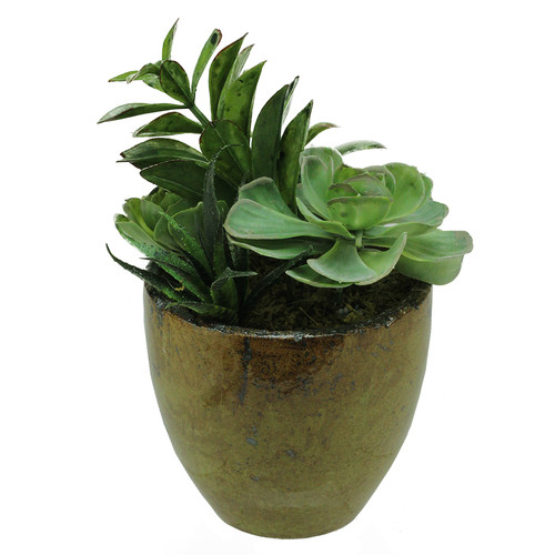Northlight Seasonal Artificial Mixed Succulent Desk Top Plant in Decorative Pot