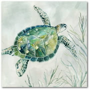 "Courtside Market Sea turtle I 16""x16"" Gallery-Wrapped Canvas Wall Art"
