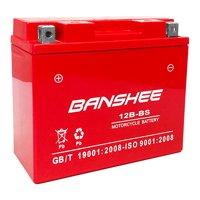 YT12B-BS AGM Maintenance Free Battery