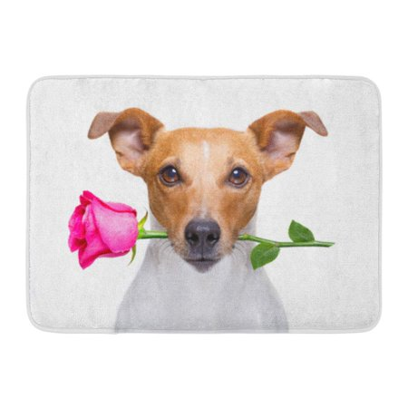 SIDONKU Jack Russell Dog with Pink Red Rose in Mouth Love on Valentines Day White Doormat Floor Rug Bath Mat 30x18 (Titanic Love Scene Jack And Rose In Car)