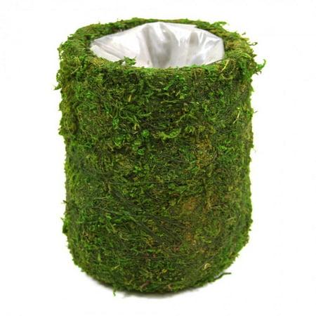 Wholesale Bud Vases - Koyal Wholesale Cylinder Moss Table Vase Set (Set of 6)