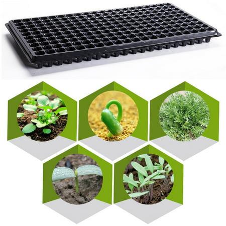 Black Gold Seedling - 200 Cells Plant Seeds Grow Box Insert Propagation Nursery Seedling Starter Tray