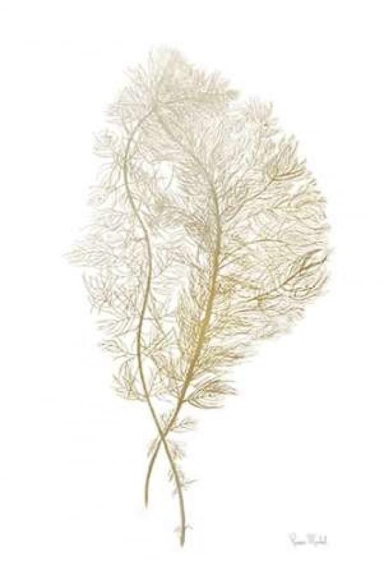 Fern Algae Gold on White Poster Print by Ramona Murdock 24 x 36