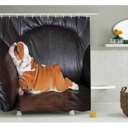 English Bulldog Shower Curtain Puppy Resting On A Sofa Funny Animal Photography Cute Canine