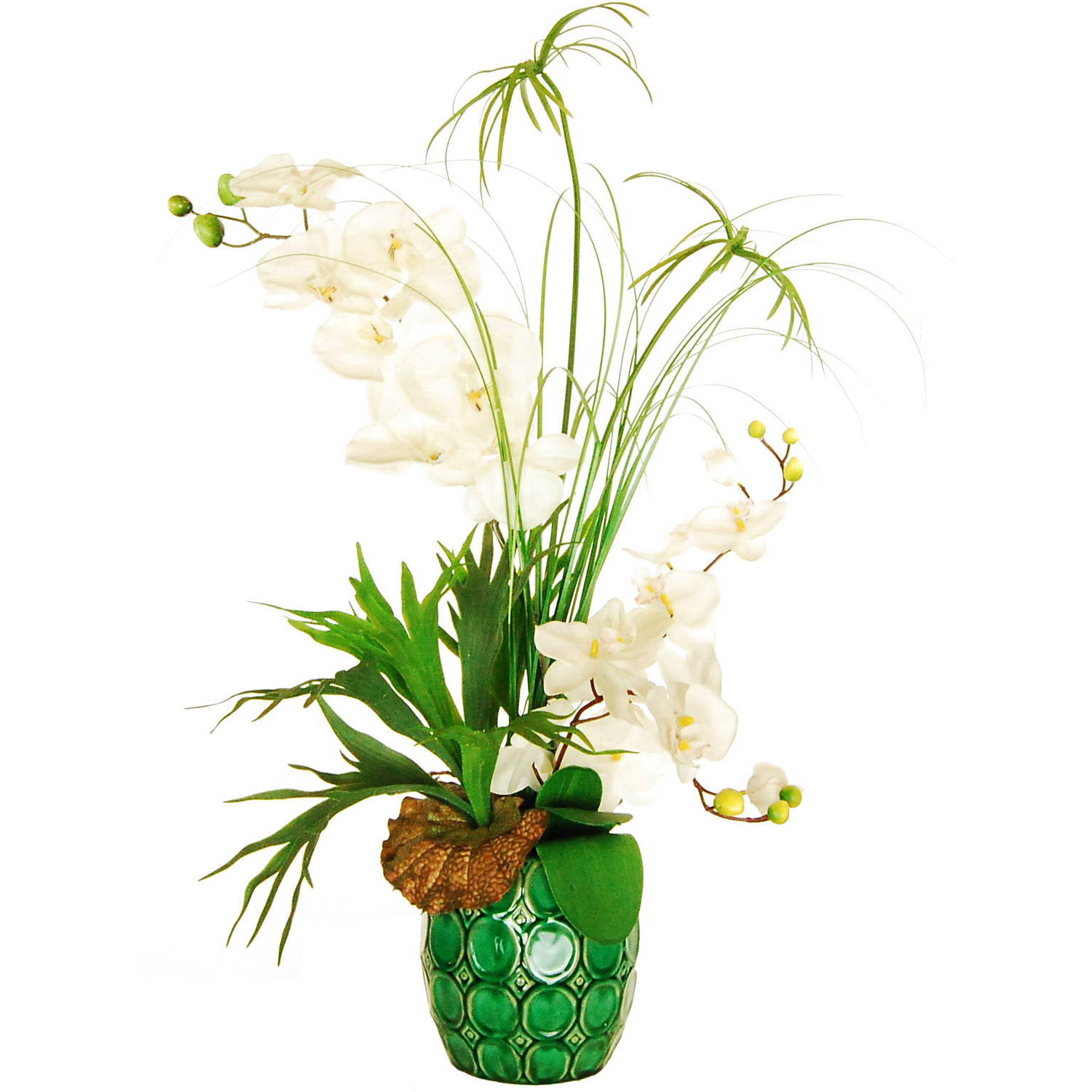 """Designs by Lauren 32"""" Phalaenopsis Orchid Arrangement with Cypress Papyrus and a Horn Plant in an Embossed Ceramic Vase"""