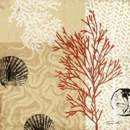Tandi Venter Coral Impressions (Posterazzi Coral Impressions II Canvas Art - Tandi Venter (24 x 24) )