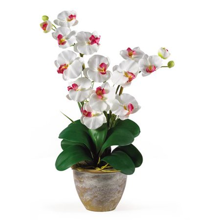 Nearly Natural Double Phalaenopsis Silk Orchid Flower Arrangement, White