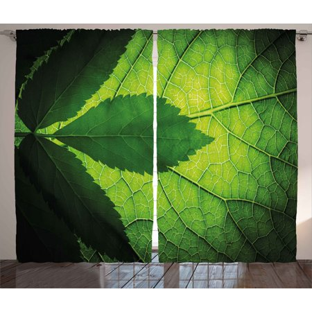 Green Decor Curtains 2 Panels Set  Nature Forest Big Amazon Brazilian Tree Leaf With Vein And Sunbeams Image  Window Drapes For Living Room Bedroom  108W X 90L Inches  Olive Dark Green  By Ambesonne