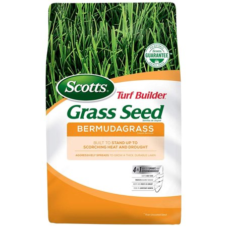 Turf Builder Bermudagrass Grass Seed (Sold in select Southern states), Grow quicker, thicker, greener grass By