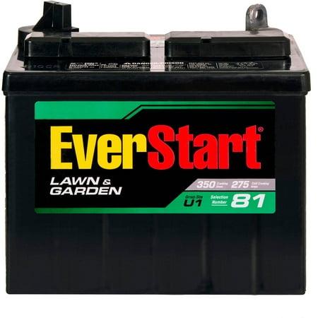 Everstart Lawn Garden Battery