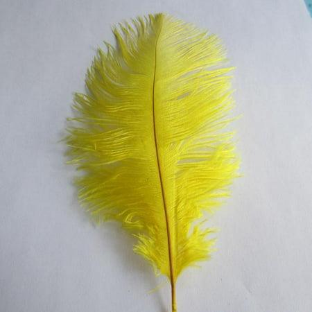 Ostrich Feather Decorative Centerpiece, 15-Inch, 1-Piece, Yellow - Feather Centerpiece