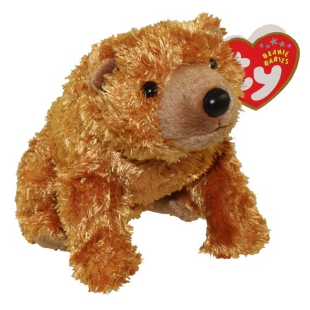 TY Beanie Baby - SEQUOIA the Brown Bear (5