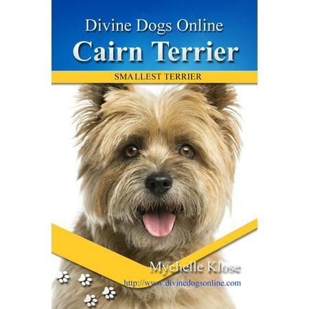 Cairn Terrier - eBook (Akc Cairn Terrier)