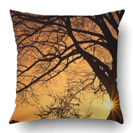 ARTJIA Orange Landscape Silhouette of Willow Tree with the Sun Behind Sunset Sunrise Cloudscape Gelderland Pillowcase 18x18 inch