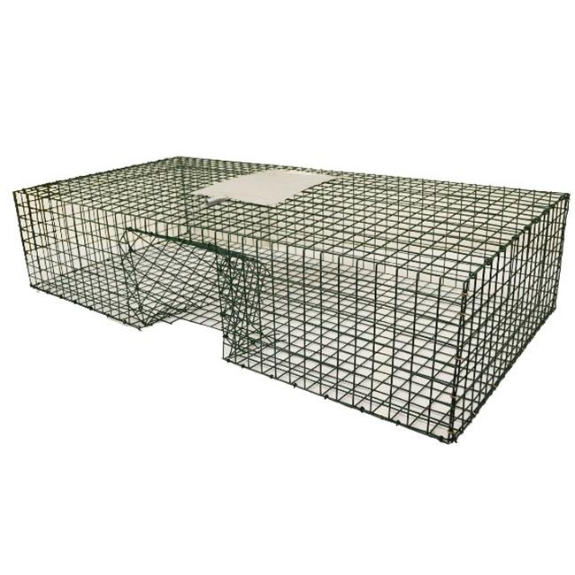 Kness Kage-All-Pigeon Live Animal Trap