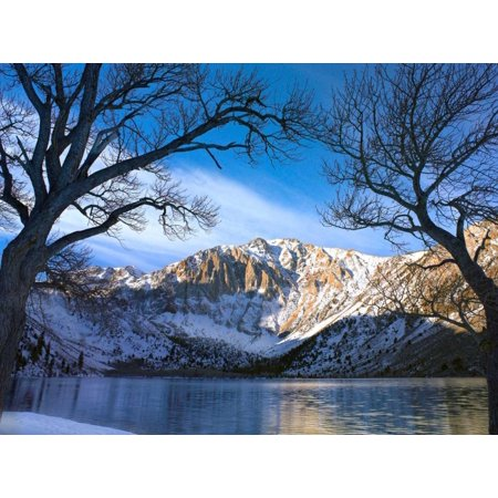 Mountain Laurel Soft Shell (Laurel Mountain and Convict Lake framed by barren trees in winter eastern Sierra Nevada California Poster Print by Tim Fitzharris )
