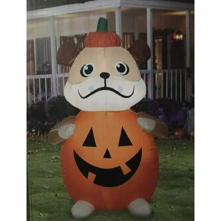 Halloween Ec Ab Pumpkin Dog Small (Halloween Pumpkin Stencils Dogs)