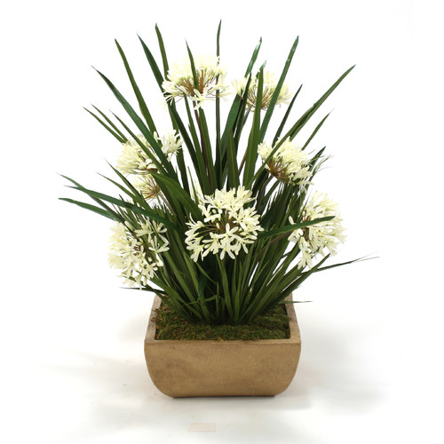 Distinctive Designs Agapanthus with Blade and Bulb Foliage in Honey Square Stone Tray
