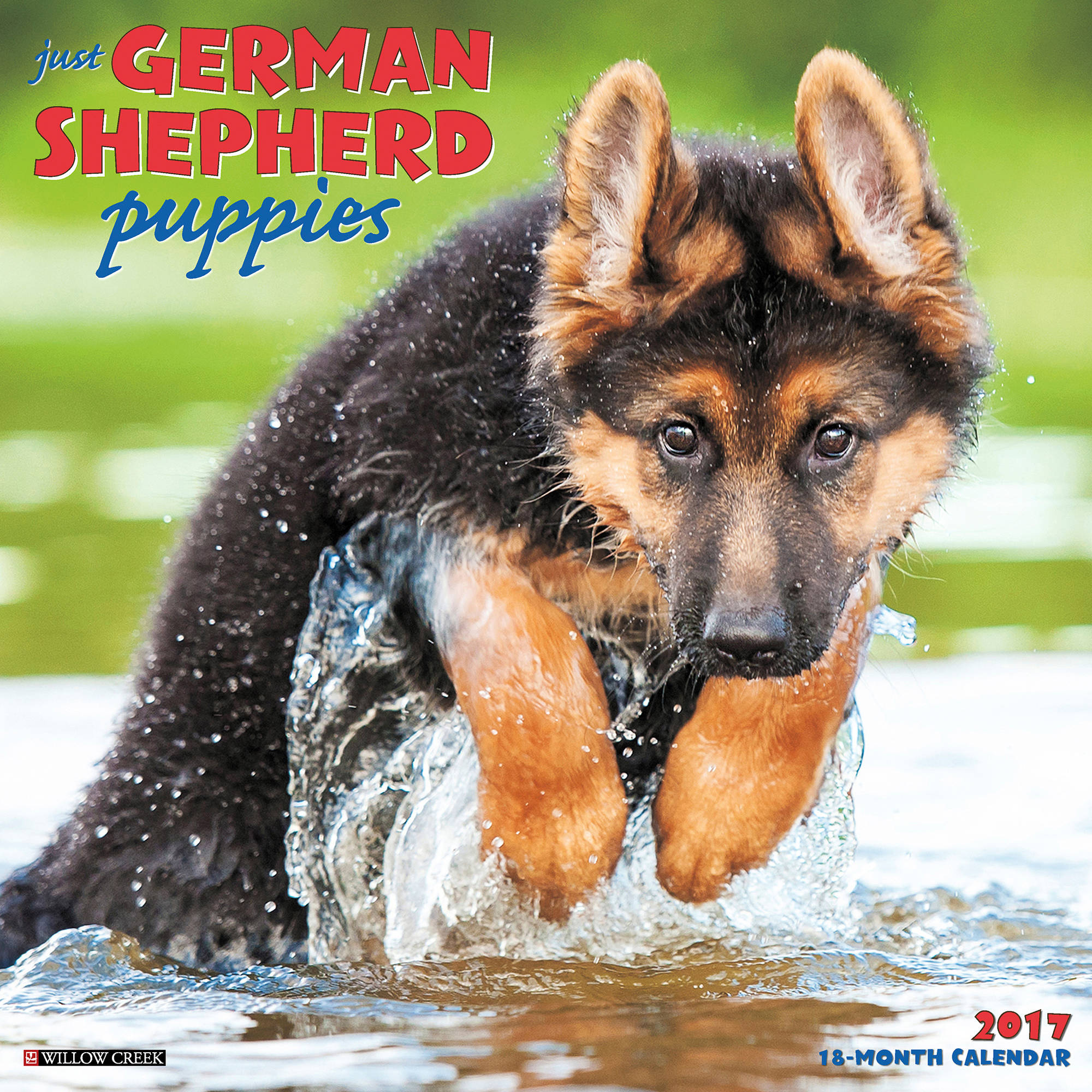 2017 Just German Shepherd Puppies Wall Calendar