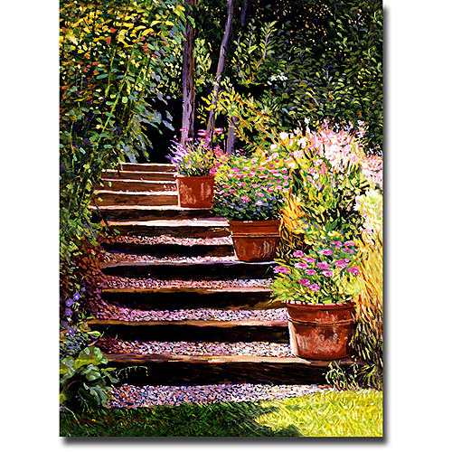 "Trademark Art ""Pink Faisies Wooden Steps"" Canvas Wall Art by David Lloyd Glover"