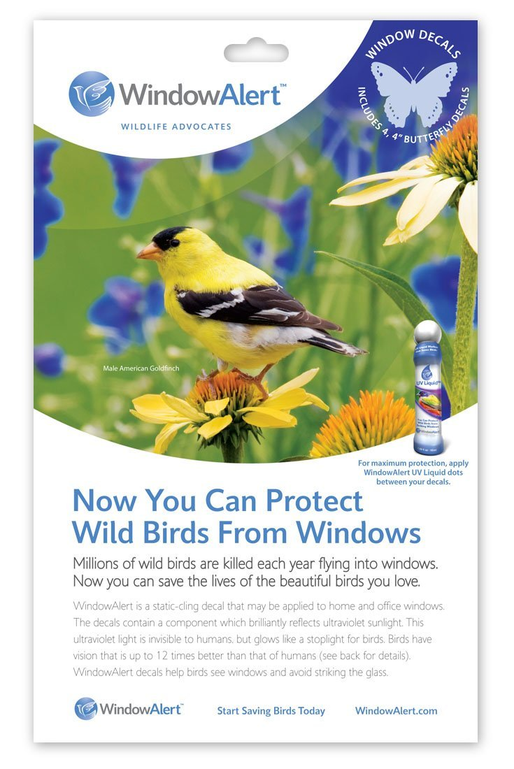 Window Alert 4 Square Decals Save and Protect Wild Birds from Window Strikes