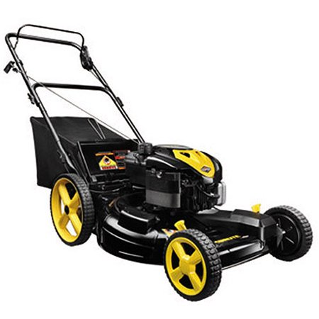 Brute by briggs stratton 22 3 n 1 front wheel drive gas lawn brute by briggs stratton 22 3 n 1 front wheel drive gas fandeluxe Gallery