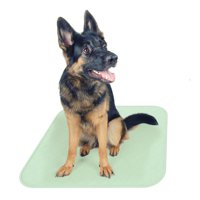 Puppy pads pet training reusable mat- quick absorb 30 in x 32 in, 2 count