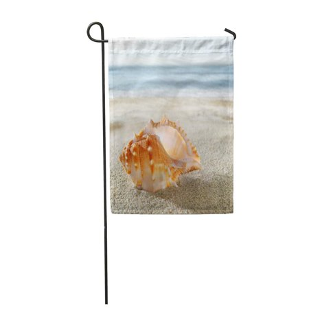 LADDKE Blue Conch Shell on The Sandy Beach Sand Aquatic Climate Coast Coastline Copy Garden Flag Decorative Flag House Banner 12x18 inch