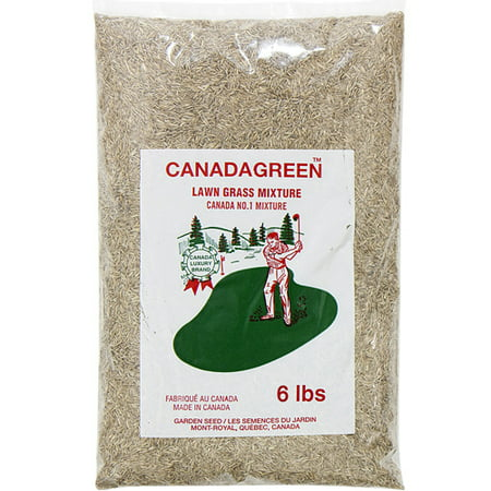 Canada Green Grass Lawn Seed - 6 Pound Bag (Best Grass Seed For Hard To Grow Areas)
