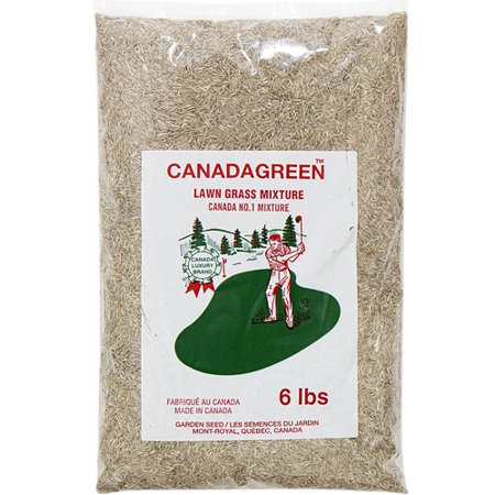 Canada Green Grass Lawn Seed - 6 Pound Bag - Lawn Care Grass Seed