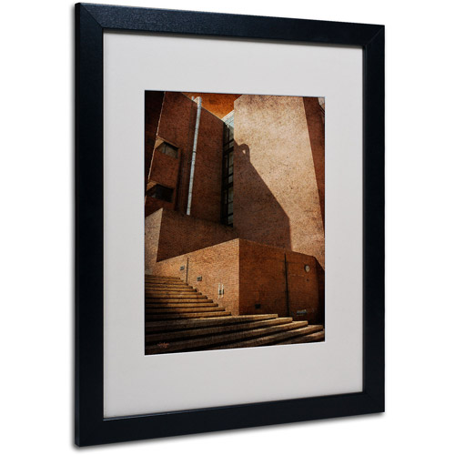 "Trademark Fine Art ""Shadow and Light"" by Lois Bryan, Black Frame"
