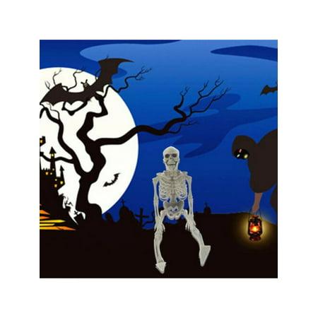 Topumt Halloween Skeleton Party Prop Decor Human Anatomy Model Human Skeleton Bingo