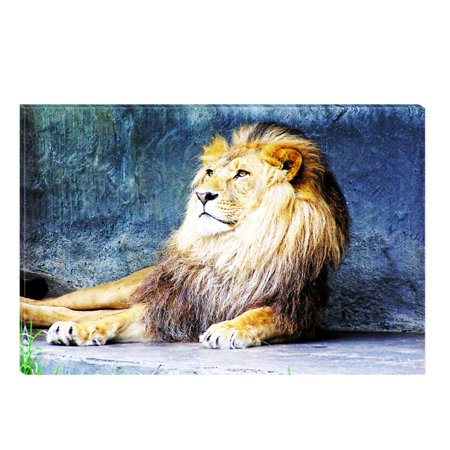 Startonight Canvas Wall Art Lion King, Illuminated Animals Painting 5 Stars Gift 23.62 X 35.43 (5 Piece Canvas Wall Art Star Wars)
