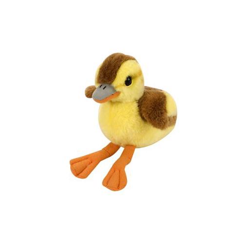 Baby Mallard Duckling With Sound by Wild Republic - KM87227