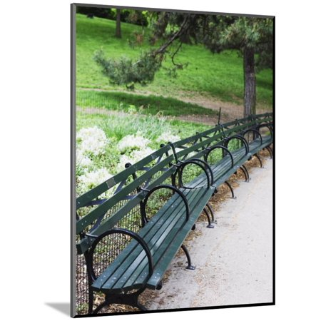 Benches Central Park Manhattan Wood Mounted Print By Amanda Hall