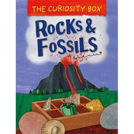 Curiosity Box (The Curiosity Box: Rocks and Fossils)
