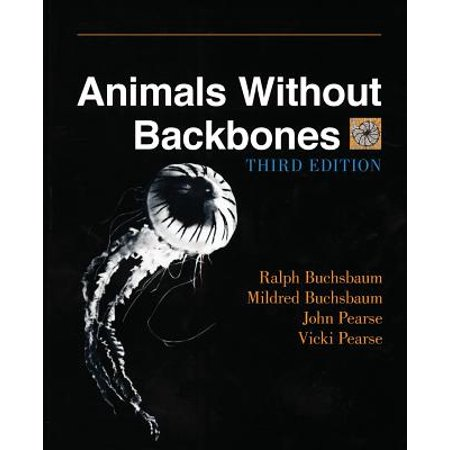 Invertebrate Animals (Animals Without Backbones : An Introduction to the Invertebrates )