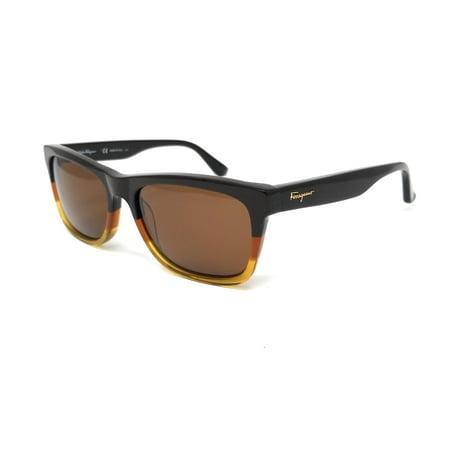 Sunglasses FERRAGAMO SF 775 S 257 BROWN HONEY San Francisco 49ers Sunglasses