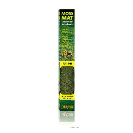 Exo Terra Moss Mat, Mini 12