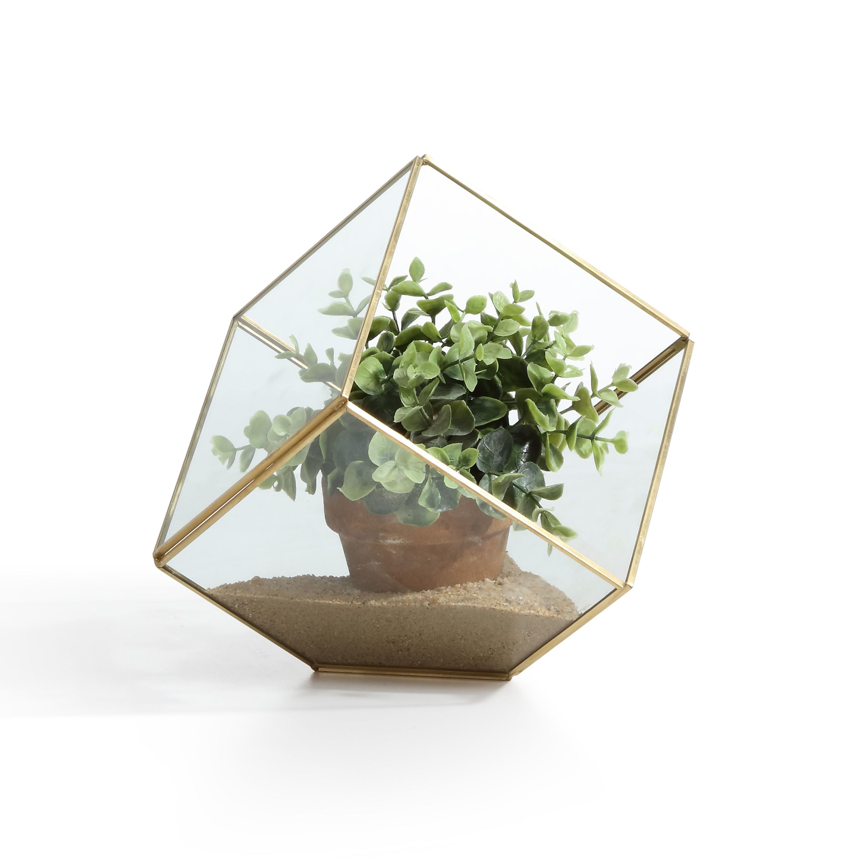 "Danya B. 7"" Cube Brass and Glass Terrarium"