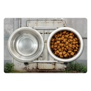 """Industrial Pet Mat for Food and Water, Closed Worn out Rusty Iron Door of an Abandoned Building Factory Picture, Non-Slip Rubber Mat for Dogs and Cats, 18"""" X 12"""", by Ambesonne"""