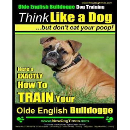 Olde English Bulldogge Training  Think Like A Dog But Dont Eat Your Poop  Heres Exactly How To Train Your Olde English Bulldogge