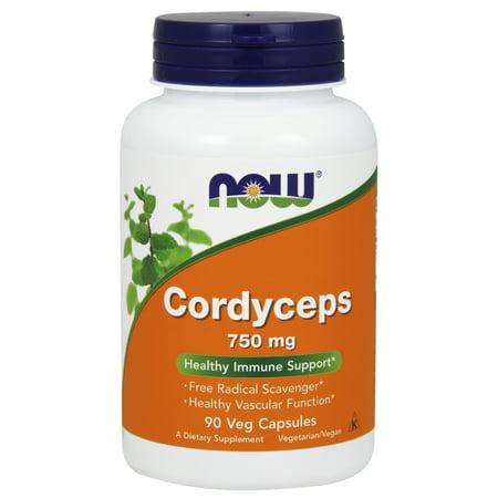 NOW Supplements, Cordyceps (Cordyceps sinensis)750 mg, 90 Veg Capsules 750 Mg 240 Capsules