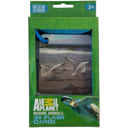 Smart Play Animal Planet 3D Flash Cards, Marine Animals (3d Planets)
