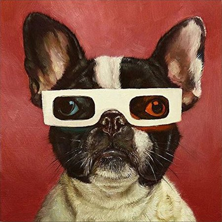 3D Dog by Lucia Heffernan 12x12 Boston Terrier Art Print Poster Humor