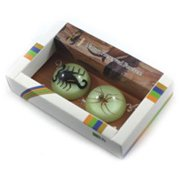 Ed Speldy East MT3801 2PC Magnet set with Real Scorpion and Spider in Acrylic