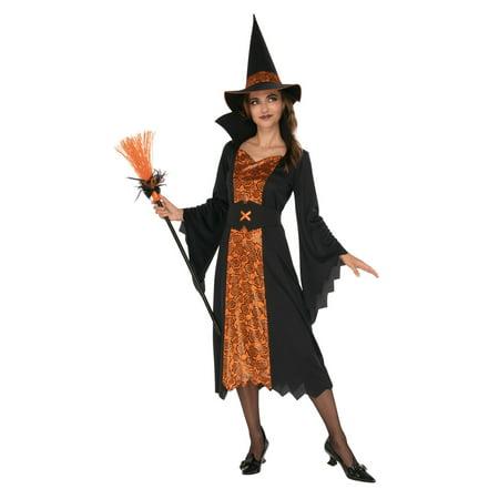 Witch Ladies Costume](Ladies Witch Costume)