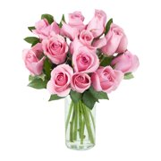 Arabella Farm Direct Bouquet of 12 Fresh Cut Pink Roses with Free Vase