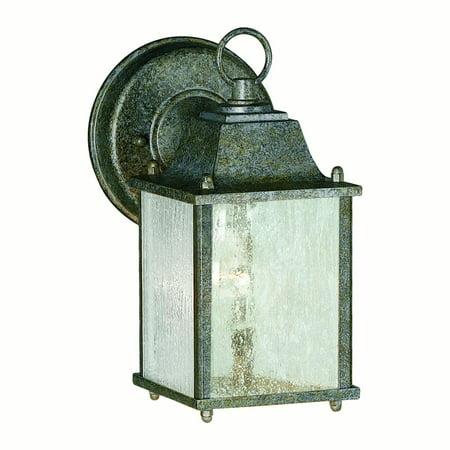 Forte Lighting 1 Light Outdoor Wall Lantern