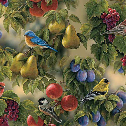"Springs Creative Packed Birds Bird Sanctuary 44"" wide Fabric by the Yard"